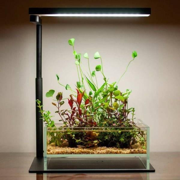 Bilde av Chihiros CII Series Desktop LED RGB Light Base Stand